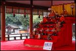 京の流しびなの様子